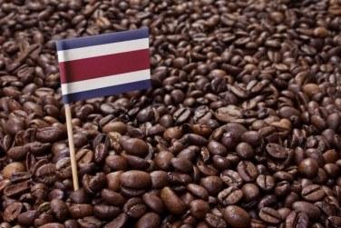 コスタリカコーヒーの特徴