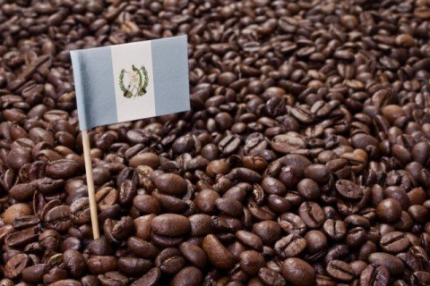 Flag of Guatemala coffee