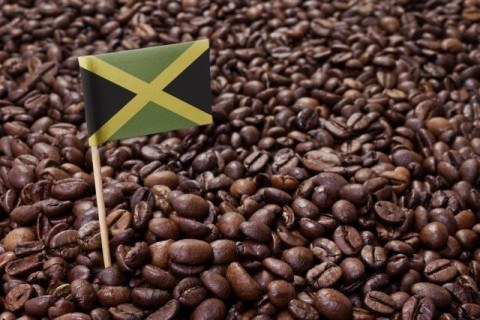 Flag of Jamaica coffee 480x320