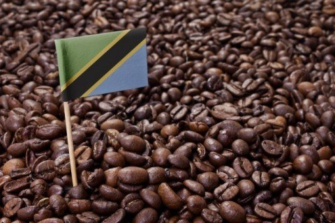Flag of Tanzania coffee