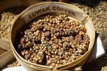 """世界一希少な""""luwak coffee""""の飲み方"""
