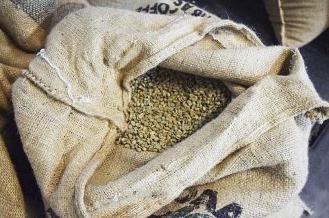 コーヒー生豆商社ベロコーヒージャパンについて