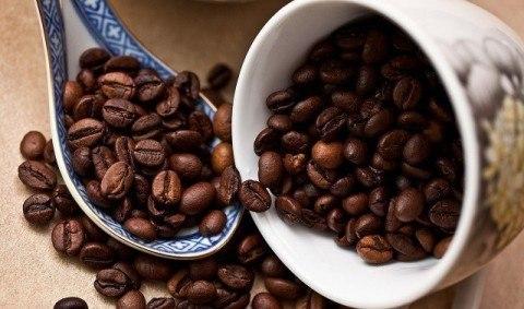 055-コーヒー豆ロブスタ種の特徴と産地
