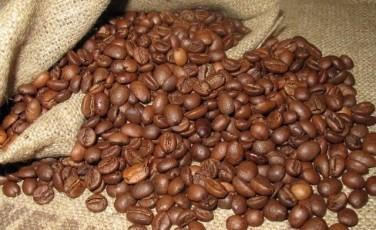 コーヒー豆アラビカ種の特徴と産地