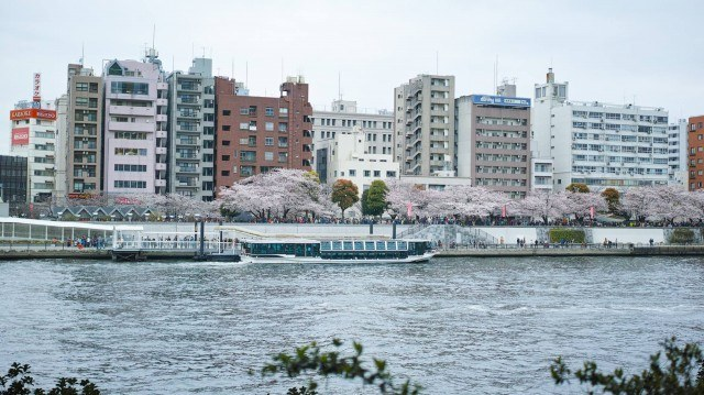 from afar 倉庫01_asakusatown