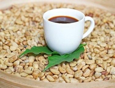 フォレストコーヒーとは