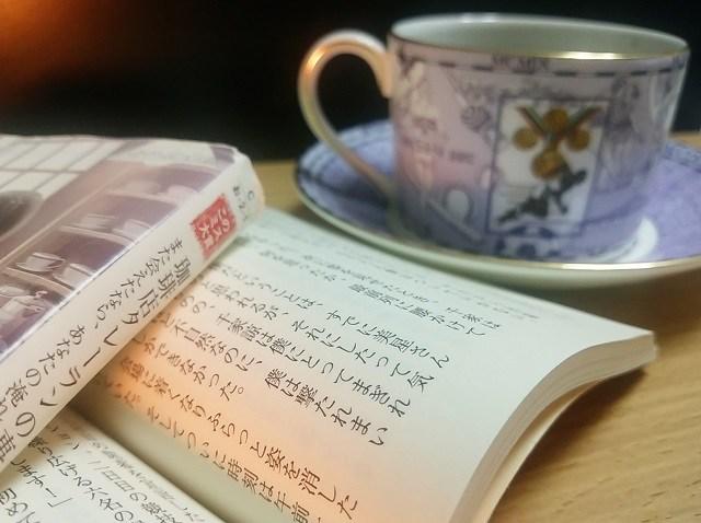 チャンチャマイヨ_読書