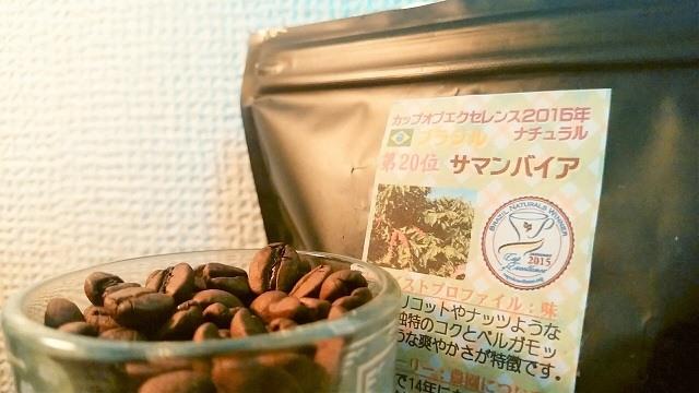 Nuts & Gelato「ブラジル サマンバイア」