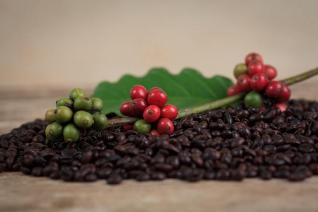 coffee_beans_and_red_rip