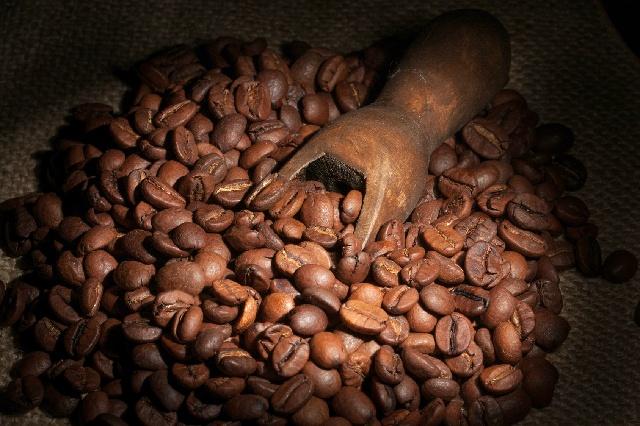 古くなったコーヒー_コーヒー豆
