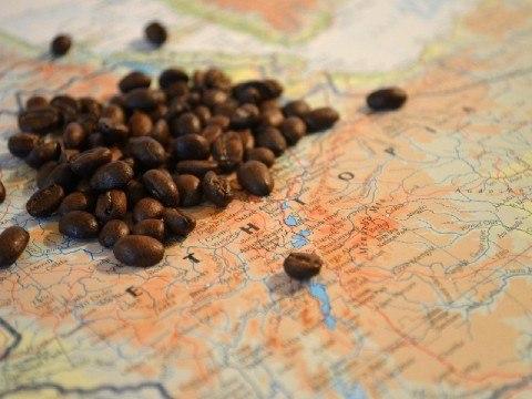 1日のコーヒー消費量はどのくらい? 480x360