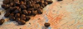 1日のコーヒー消費量はどれくらい?