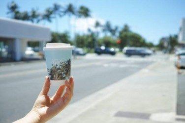 ハワイのおすすめコーヒーショップ【その2】