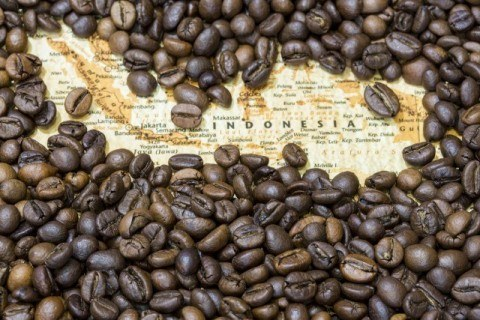indonesia map coffee 480x320