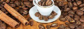 コーヒー豆 カップ 272x96