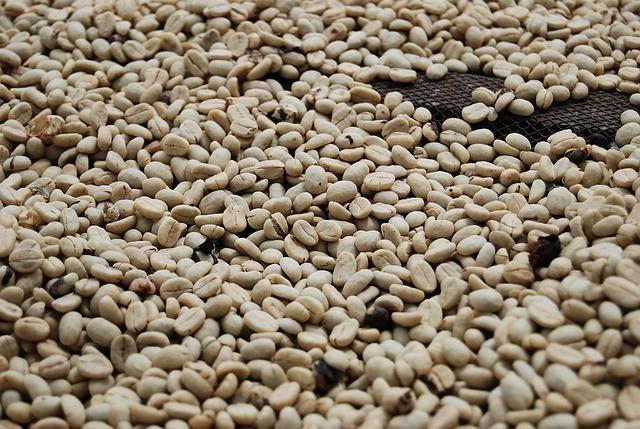 ライトロースト_コーヒー豆