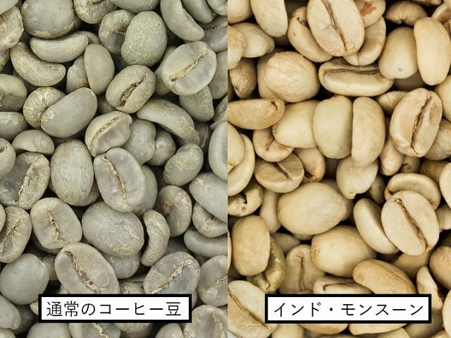 インド・モンスーン_生豆