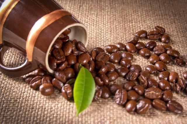 コーヒー豆_グレード_スペシャルティ