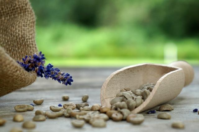 コーヒー豆_生豆_アメリカ