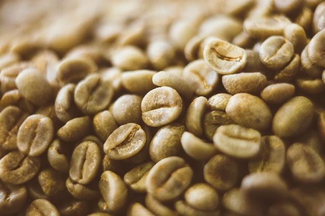 コーヒー豆_生豆_パーチメント