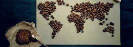 コーヒー豆 272x96