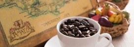 ジャマイカ コーヒー豆 272x96
