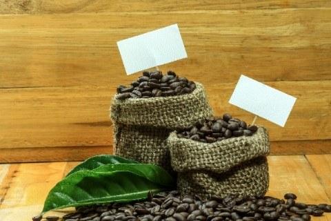 利き豆_カッピング_ブラジル_コーヒー産地