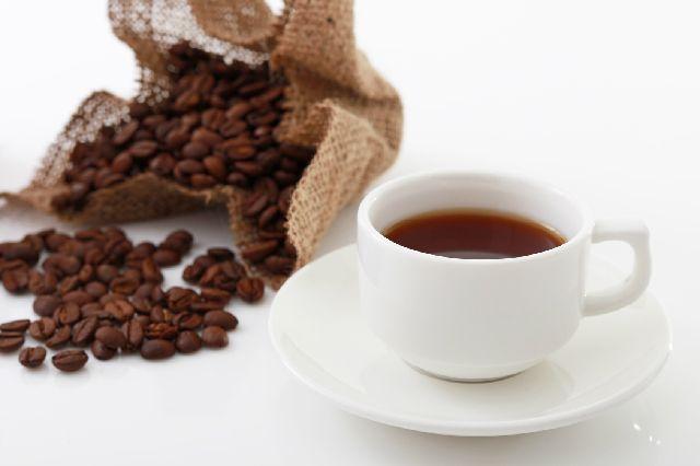 コーヒー豆_ロブスタ種