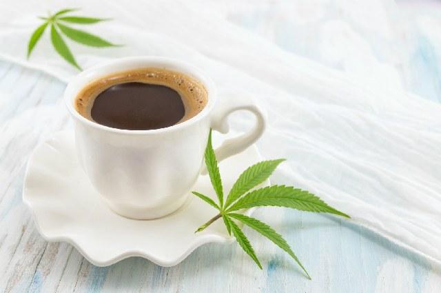 コーヒー_医療典範