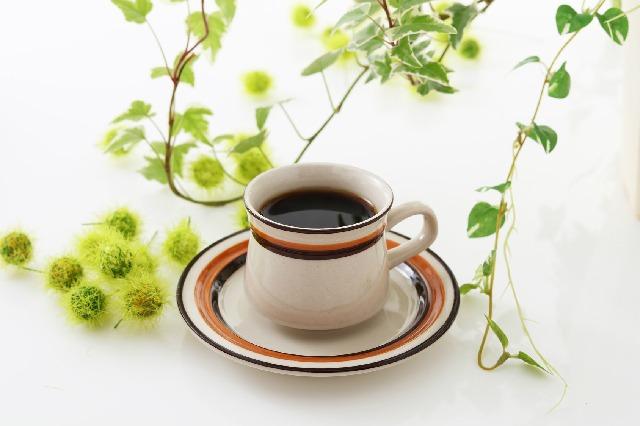 コーヒー_風味_野菜_ハーブ