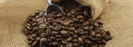 活用アイディア コーヒー豆 272x96