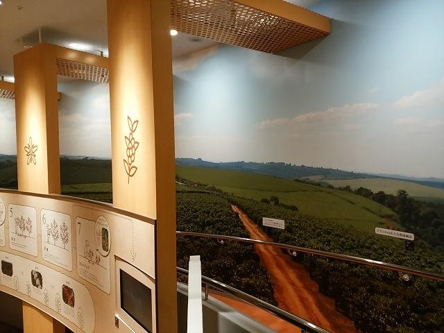 UCCコーヒー博物館 006