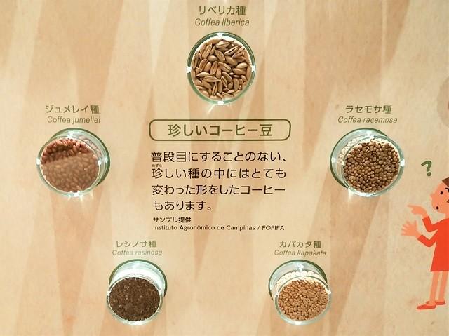 UCCコーヒー博物館_008