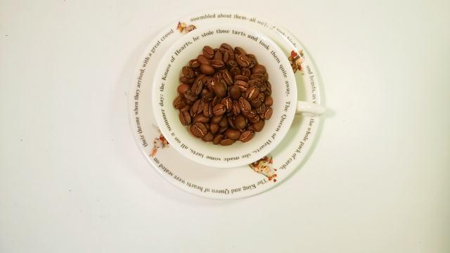 【エクアドル】ガラパゴス諸島産コーヒー「サン・クリストバル」